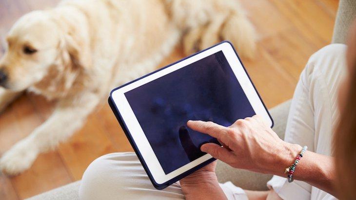 「あの犬はなんという犬種だろう?」そんな疑問を解決するアプリが登場
