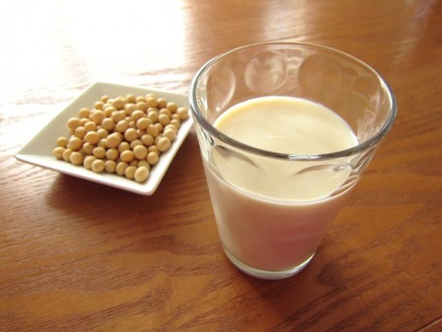 犬に豆乳を飲ませても大丈夫!豊富な栄養と注意点