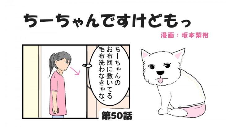 ちーちゃんですけどもっ【第50話】「愛犬のにおい」