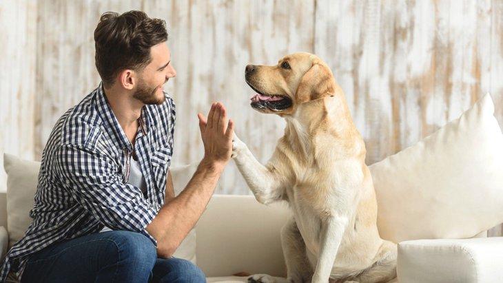 犬にもパーソナルスペースがある?愛犬との距離感を測ろう