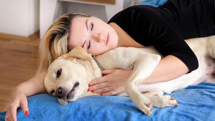 犬と寝るのは大丈夫?一緒に寝ることのメリットやデメリットなど
