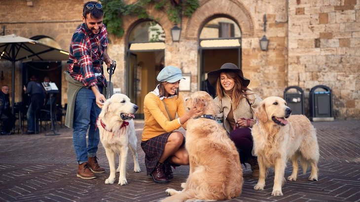 初めて会う犬に絶対してはいけない『挨拶の仕方』4選