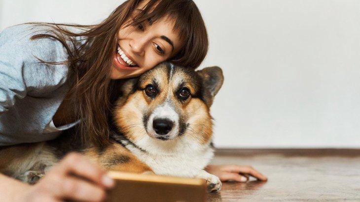 犬にカメラを向けると目を逸らしてまう心理3選!キレイに撮るためのコツとは?