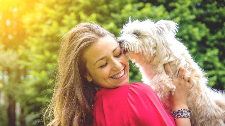 犬が飼い主の髪の毛を噛む理由3つ