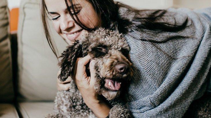 犬の譲渡会に参加してみよう!開催情報と里親になる方法や注意点