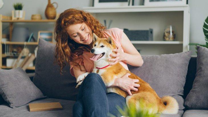 環境化学物質の研究で、犬が人間の健康を予測するお手伝い