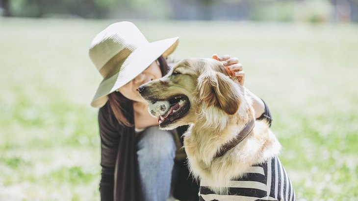 犬がずっと一緒にいたいと感じる飼い主の特徴5つ
