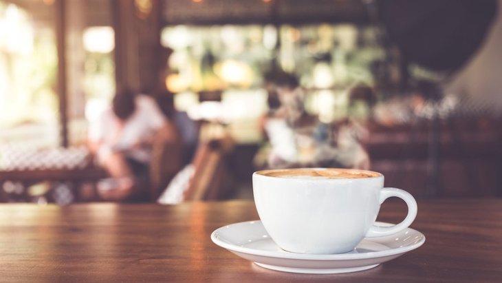 川崎のドッグカフェおすすめ10選!ドッグラン併設のカフェ、犬連れでランチできる人気店まで