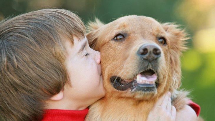 子どもに犬を飼いたいと言われたら考えるべき5つのこと