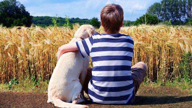 介助犬がADHDの児童の症状を軽減するという研究結果