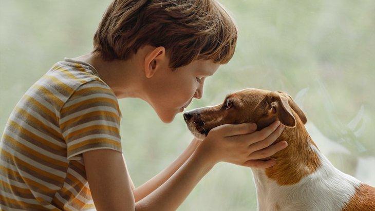 知っておいても損はない!犬とキスする時の危険性3つ
