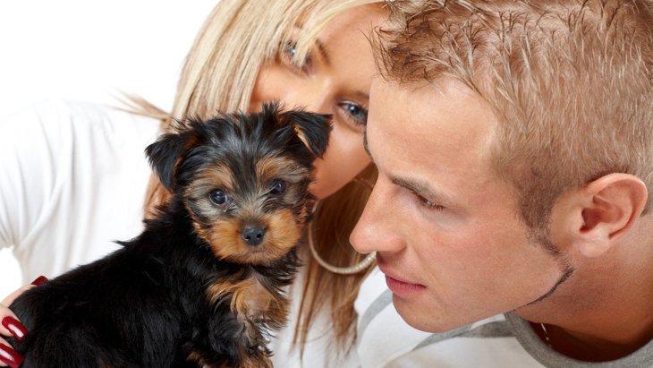 犬が『人によって態度を変える』理由7つ