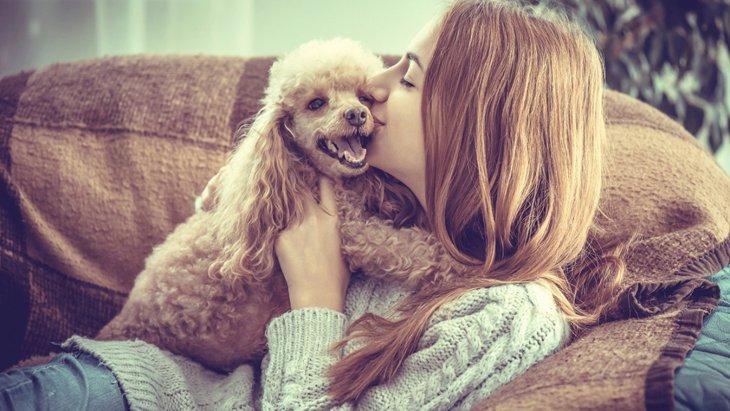 【遊び・散歩・しつけ】犬により幸せを感じてもらえるアドバイス