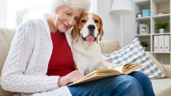 犬より先に飼い主が亡くなったらどうなるの?備えておくべき4つのこと