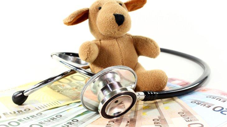 犬の去勢にかかる費用とは?手術前後で必要なお金や補助金について