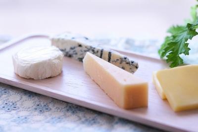 犬はチーズが大好き!でも与え過ぎに注意が必要