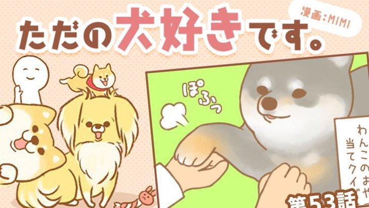 ただの犬好きです。【第53話】「おやつはどっち?」