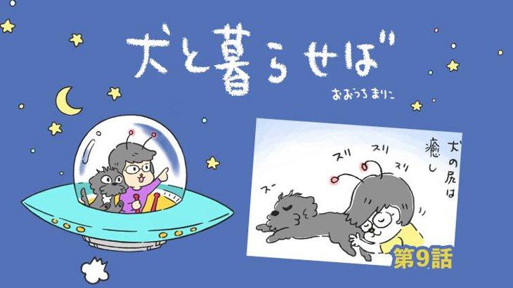 犬と暮らせば【第9話】「ヘイ!尻!」