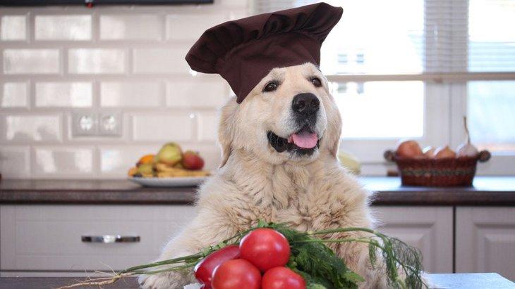 犬にNGな『夏野菜』6選