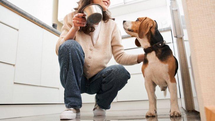 犬がしている『我慢サイン』5選!状況別の正しい対処法とは?