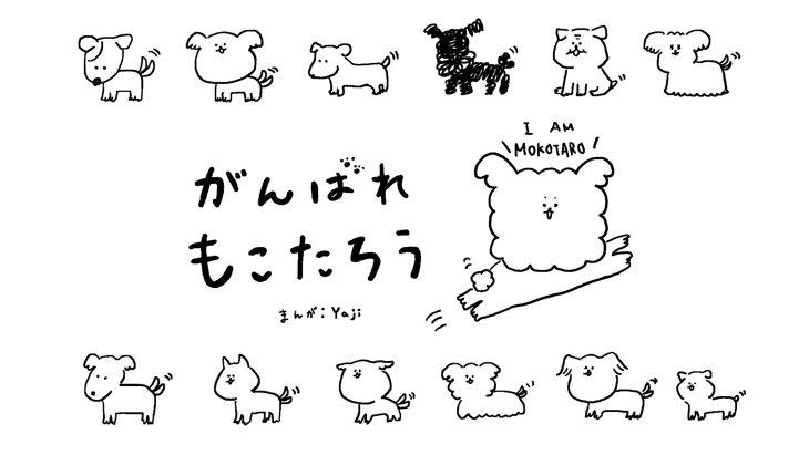 がんばれ もこたろう【第11話】~~散歩のアレ~~