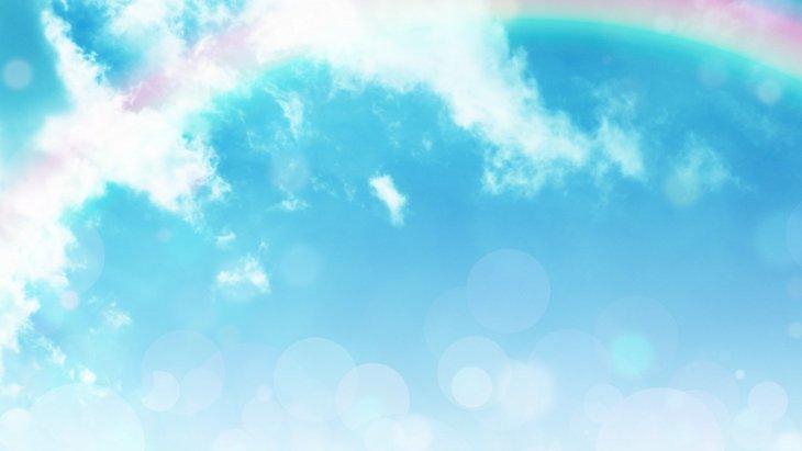 【訃報】ポメラニアンの「俊介くん」14歳で虹の橋へ