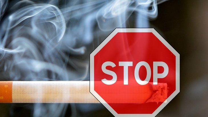 犬の前で吸わなければ大丈夫…?三次喫煙ってご存知ですか?
