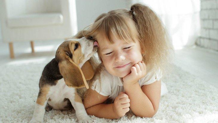 なぜ犬は人を慰めてくれるのか?主な理由2つ