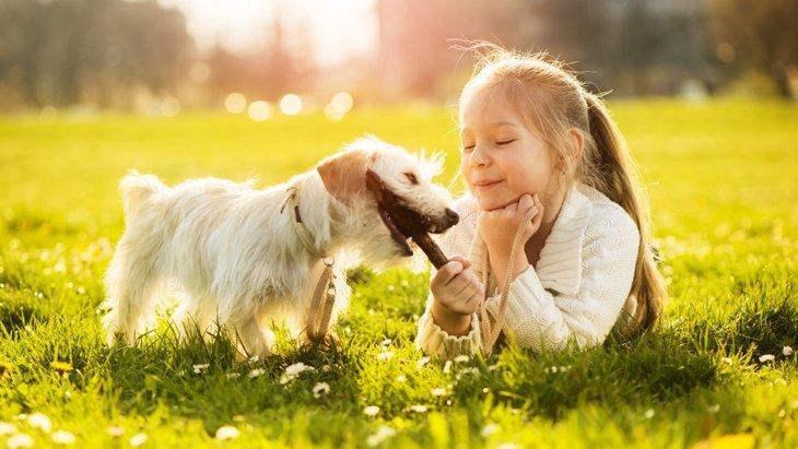 犬に噛まれる夢の意味や心理とは