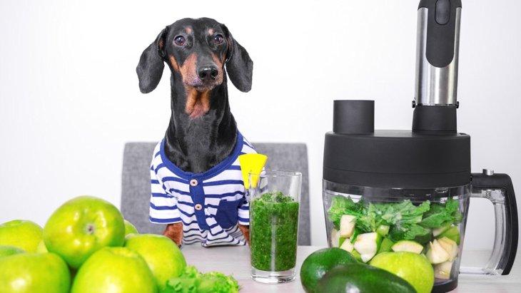 犬に『野菜ジュース』ってあげても大丈夫なの?