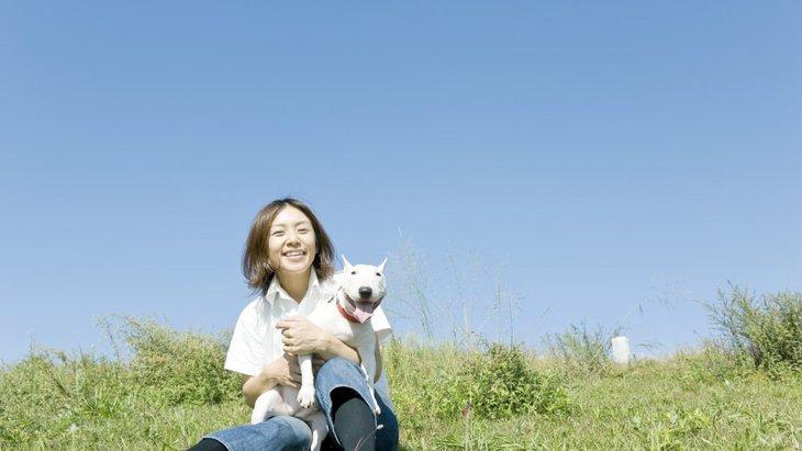 犬を飼うとできなくなる4つのこと~安易な気持ちで飼わないために~