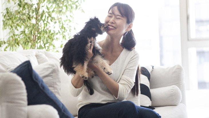 犬が『心から嬉しい!』と感じている時にする仕草や態度5選