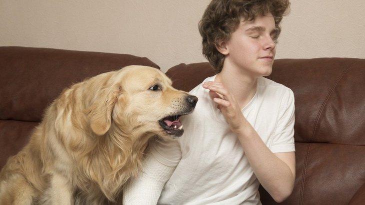 愛犬はどう?『内弁慶な犬』の特徴3選