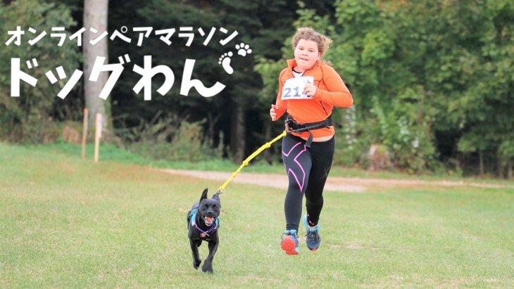ドッグわん『愛犬と一緒に走るオンラインペアマラソン』
