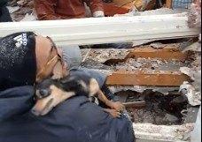 竜巻で家屋が全壊。瓦礫の中に40時間取り残された犬を元気な状態で保護!