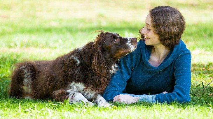 【時には地面、時にはあなた】犬が体をこすりつける3つの気持ち