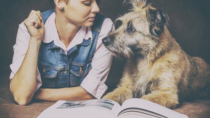 犬がテーマの本で、おすすめの人気ランキング3選!