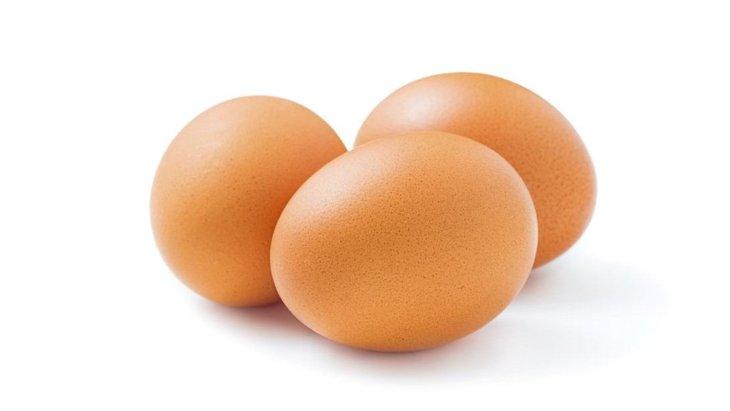 犬は卵を食べても大丈夫です!与え方や注意点など