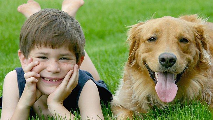 犬が人間の子供に与える4つの影響