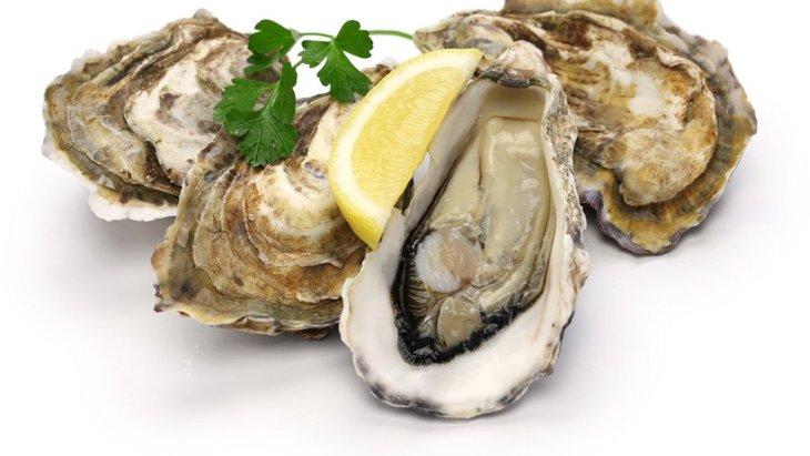 犬は牡蠣を食べても大丈夫?与える際の注意点、栄養と健康効果について