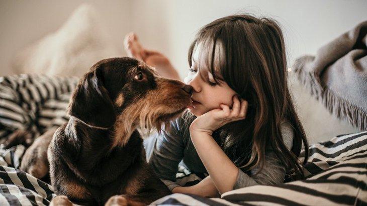 犬との口づけにはリスクが伴う?可能性がある4つの危険性