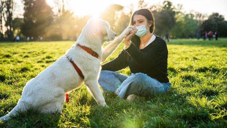 犬と飼い主、どちらが人気者?クスッと笑えるアンケート結果