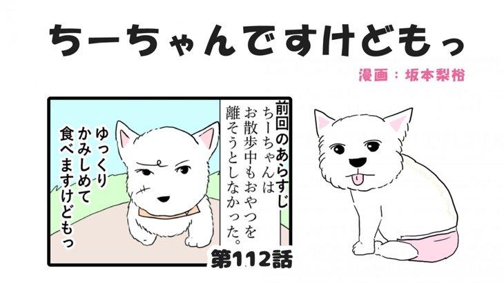 ちーちゃんですけどもっ【第112話】「ちーちゃん鞄事件③」