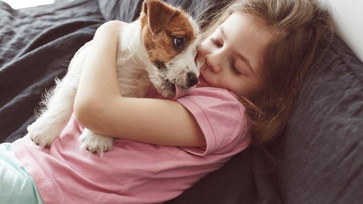 犬は飼い主と同じ部屋にいることを好んでいる?