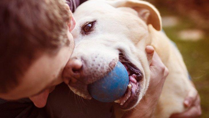 犬を飼ってノイローゼに…育犬ノイローゼにかかりやすい人の特徴4つ