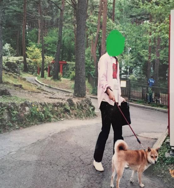 愛犬と遊べるテーマパーク!富士すばるランド「ドギーパーク」