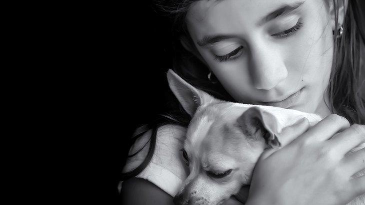 後を絶たない飼い犬の放棄 〜「家族としての犬」そのための覚悟〜