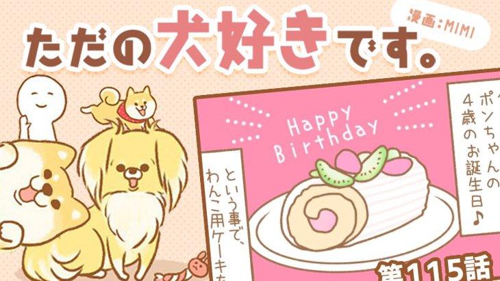 ただの犬好きです。【第115話】「誕生日ケーキ」