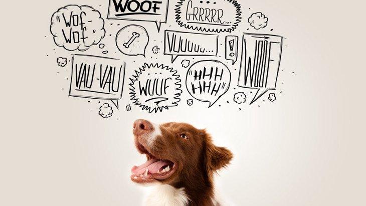 2045年には犬が人間の言葉を話し始めるかも!という研究
