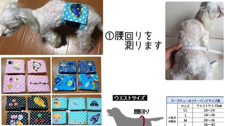 【写真で解説!】犬のマナーベルト簡単作成法